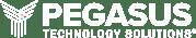 logo_pegasus_horizontal_reverse